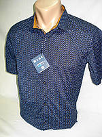 Шведка мужская  Enisse тёмно-синяя c коричневым (разм.S,M,L,XL), фото 1
