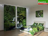 Фотокомплекты лесной ручей