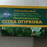 Сетка шпалерная (огуречная)1,8*10м Украина, фото 2