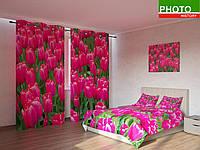 Фотокомплекты поле тюльпанов