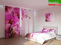 Фотокомплекты ветка орхидеи