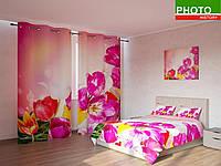 Фотокомплекты сказочные тюльпаны