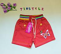 Хлопковые шортики для девочки 1-3 лет, фото 1