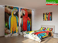 Фотокомплекты попугаи ара