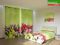 Фотокомплекты букет тюльпанов