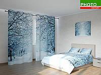 Фотокомплекты снежные деревья