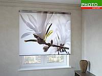 Рулонные шторы с фотопечатью нежный цветок