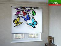 Рулонные шторы с фотопечатью бабочки, фото 1