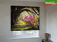 Рулонные шторы с фотопечатью арка деревьев