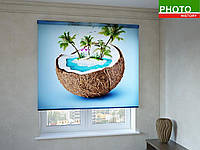 Рулонные шторы с фотопечатью пальмы в кокосе