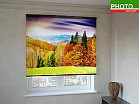 Рулонные шторы с фотопечатью осенний лес