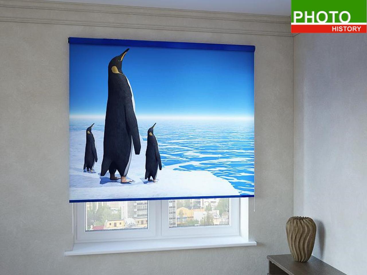 Рулонные шторы с фотопечатью королевские пингвины