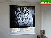 Рулонные шторы с фотопечатью белый тигр