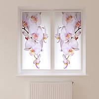 Рулонные фотошторы белая орхидея