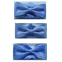 Краватки-метелики для хлопчиків Dunpillo блакитні з хусткою в кишеню
