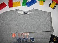 Свитшот Joe boxer оригинал рост 104 см серый 07016, фото 1
