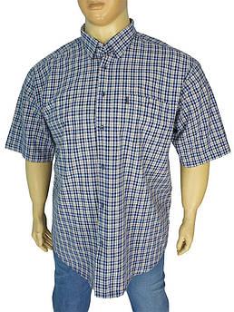 Чоловіча бавовняна сорочка Razonni 0340 B indigo великого розміру