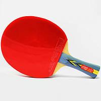 Ракетка для настольного тенниса DHS 3002 , фото 1