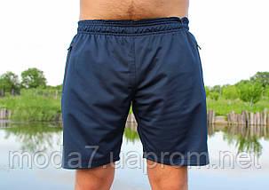 Шорты мужские синие лакоста, фото 3