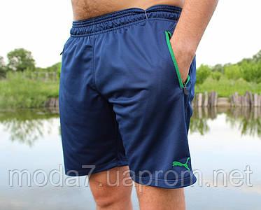 Мужские трикотажные шорты Puma синие лакоста реплика