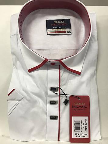 Рубашка короткий рукав батал Gold Milano, фото 2