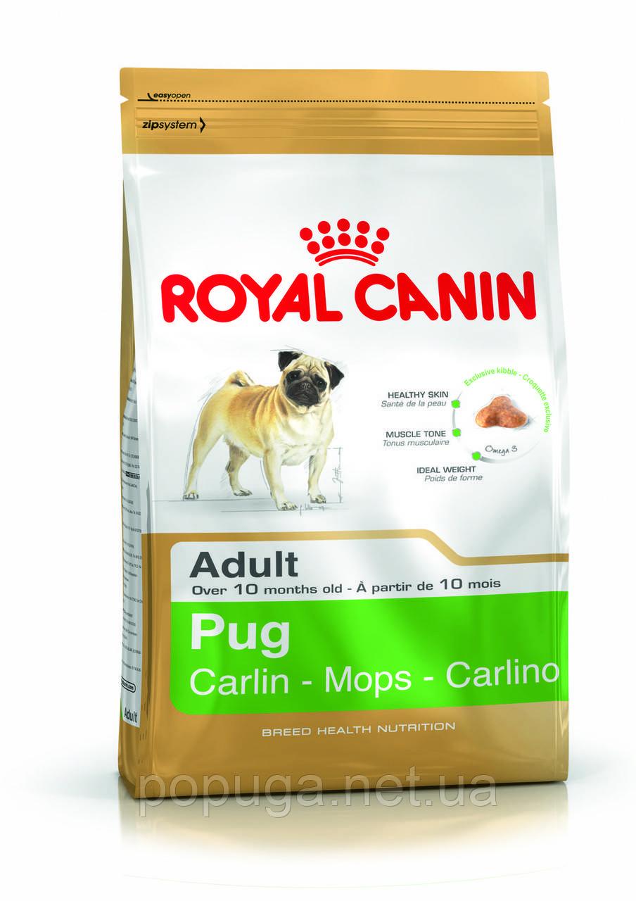 Royal Canin Pug Adult корм для мопса, 0,5 кг