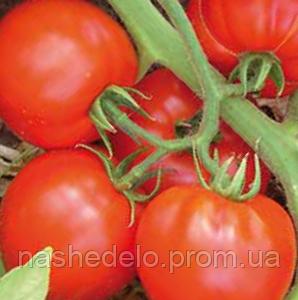 Садин Ф1 500 сем. томат Энза