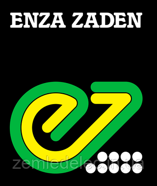 Семена огурца Седрик F1 1000 семян Enza Zaden