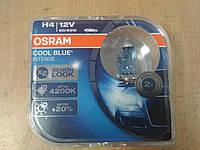 "Лампа галогеновая Н4 12V 60/55W 43 цоколь ""OSRAM""4200К Cool Blue Intence +20% - производства Германия, фото 1"