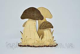 Салфетница гриб