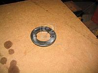 Шайба опорная (производство КамАЗ) (арт. 53205-2402175), ABHZX