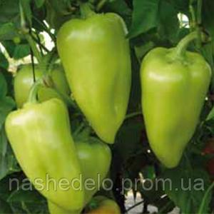 Семена перца сладкого Лотта F1 250 семян Enza Zaden