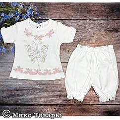 Костюмчик с панталошками для малышей Размеры: 9,12,18 месяцев (6562-1)