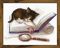 Набор для вышивания крестом «Котенок на книжке»