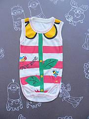 Детский боди Цветик для девочки на 2-6 месяцев