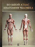 Большой атлас анатомии человека. Перез В.
