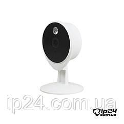 Камера Tecsar Airy TA-2 IP FullHD с углом обзора 115°