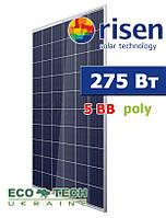 Risen солнечная батарея RSM60-6-275P 5BB поликристаллическая, фото 1