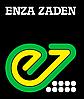 Семена редиса Тарзан F1 250 гр. Enza Zaden