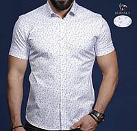 Рубашка мужская короткий рукав оптом в Украине. Сравнить цены ... 635572f7bde39