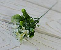 Ветка-дополнитель зелень с кремовыми цветками, фото 1