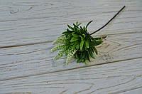 Дополнитель зелень с белым цветом, фото 1
