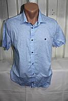 Мужские рубашки оптом (M-2XL размер) Турция, в Одессе со склада