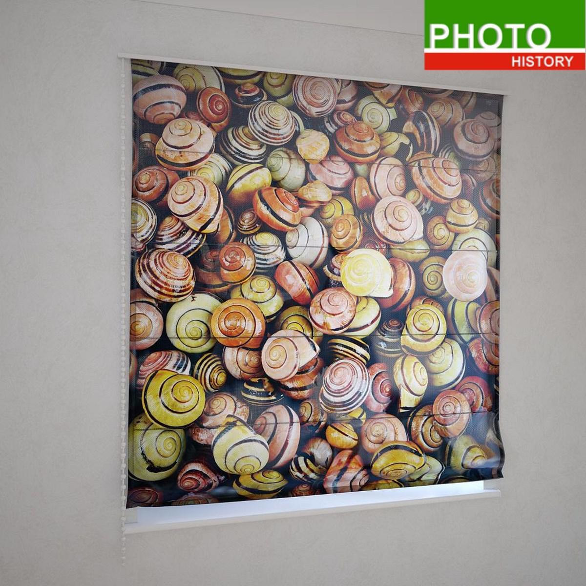 Римские фотошторы разноцветные ракушки