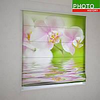 Римские фотошторы нежно розовая орхидея