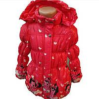 Детская демисезонная куртка для девочки (рост 98-110)