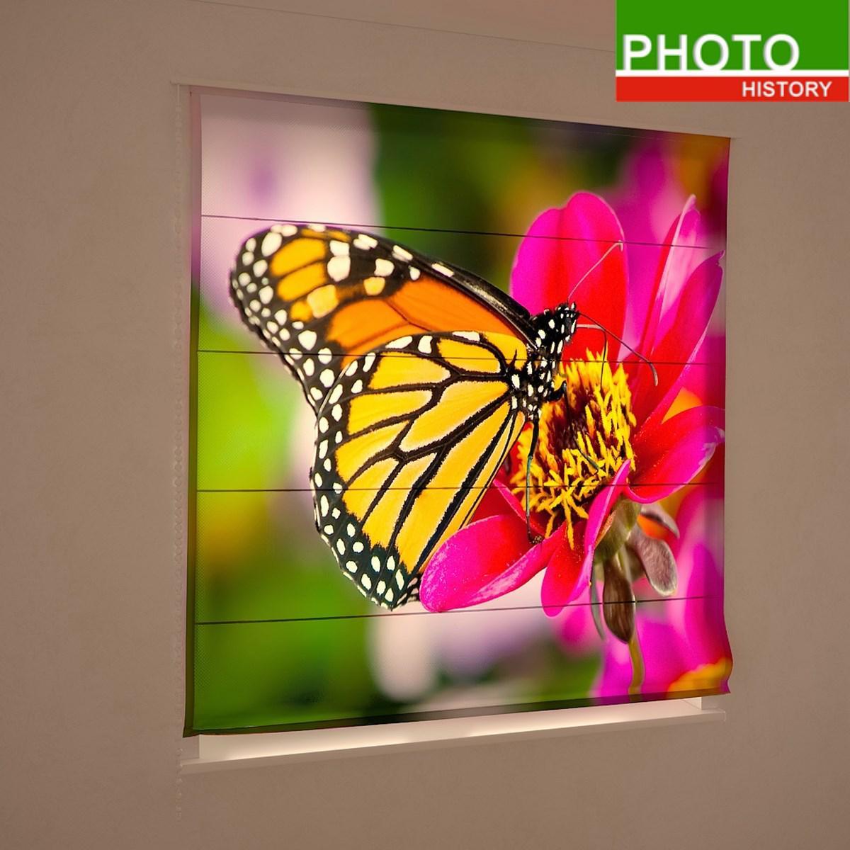 Римские фотошторы цветы бабочка крупный план