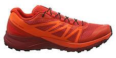 Кроссовки для бега Salomon Sense Ride L39849000, фото 2