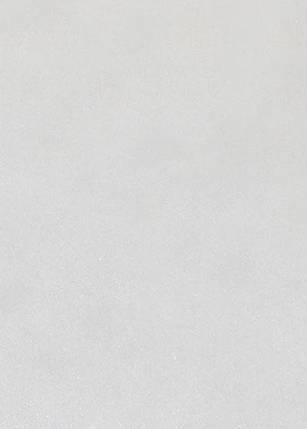 Малярный стеклохолст Wellton-Premium 50 гр/м2, 1х50 м, фото 2