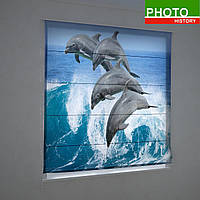 Римские фотошторы животные игры дельфинов